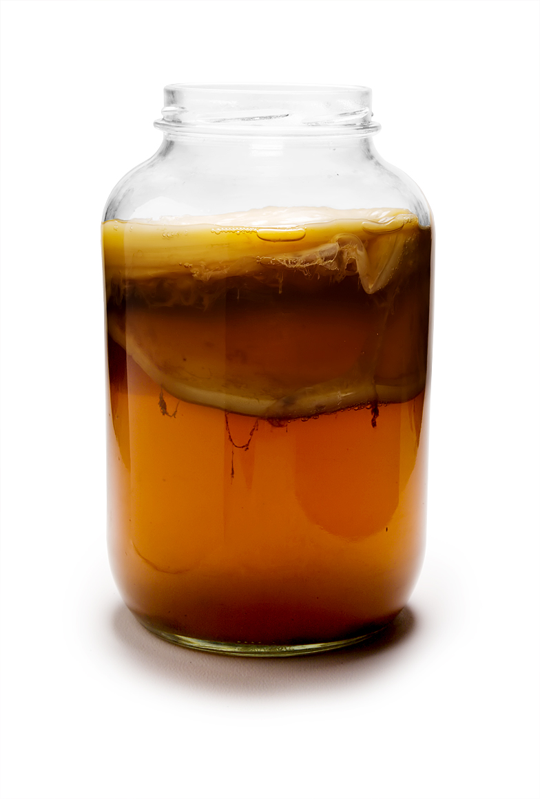 File:Introductie_tot_Kombucha_-_2013.jpg