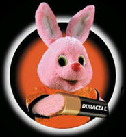 Duracell Picture.jpg